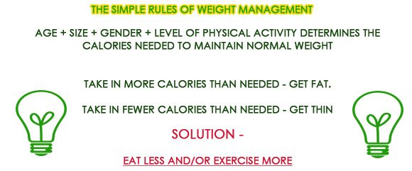 simple rules of weight loss with bee pollen supplements